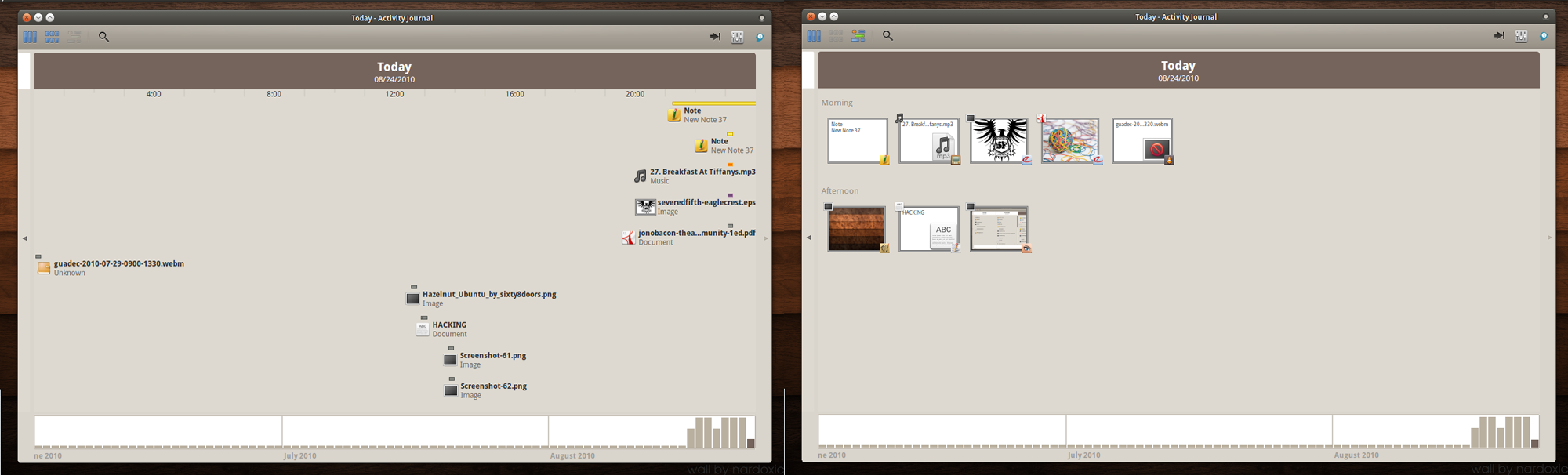 Intervals & Thumbs Views of GNOME Activity Journal